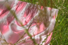 Plastic and Grass 1