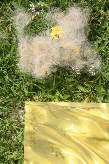 Plastic and Grass 8